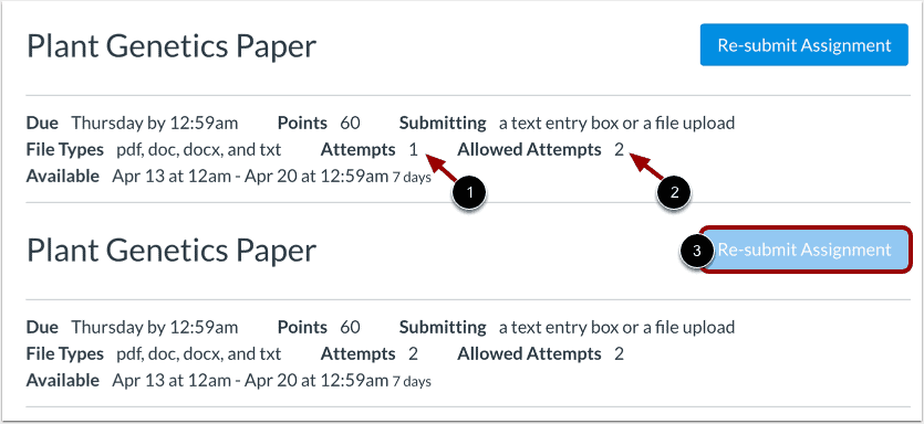 How to Submit an Assignment on Canvas