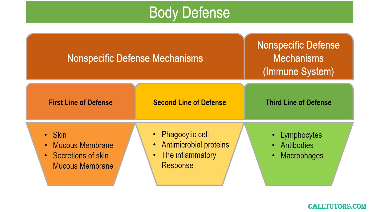 Defence Physiology Help